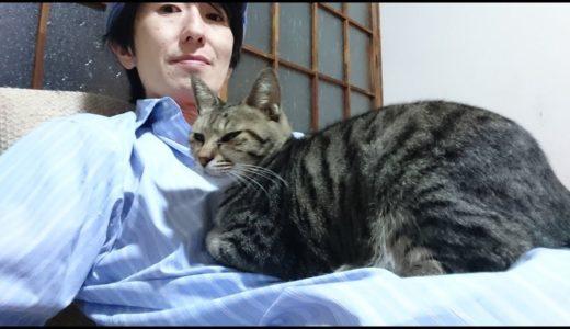 【ペット禁止の避難所を許さない!】遠藤チャンネルは悪くない