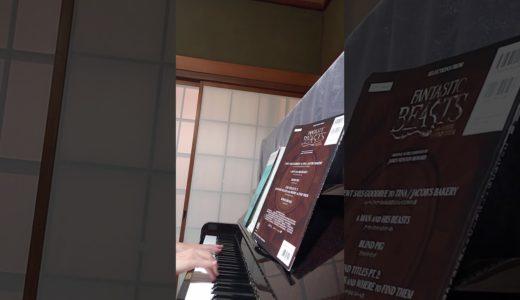 #ピアノ#NHKみんなのうた#遠藤実#白鳥園枝#雪うさぎ 配信104