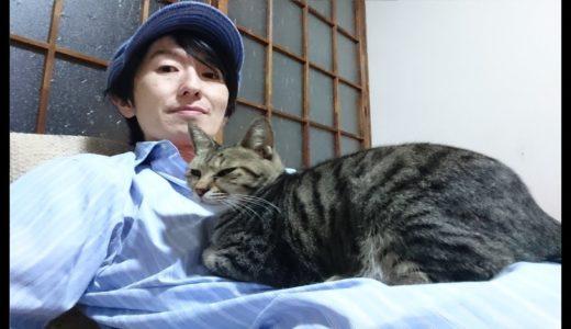 遠藤チャンネルのチワワは悪くない(*´∀`*)【9年ぶりに再会した実家のチワワの反応がヤバイ!】