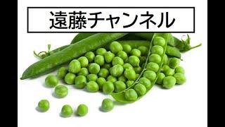 【億万長者合宿リメンバー】第485話:遠藤チャンネル