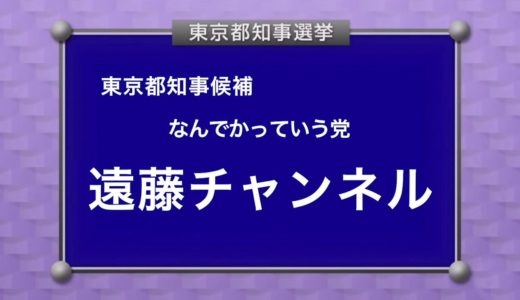 遠藤チャンネル なんでかっていう党 政見放送